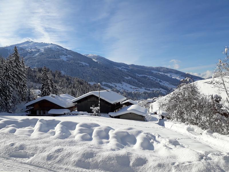 Blick vom Apartment auf Alpbach und das Wiedersbergerhorn